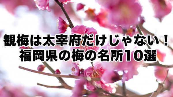 観梅は太宰府だけじゃない!福岡県の梅の名所10選